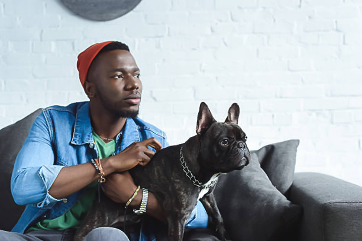 Black-Owned Pet Businesses to Support in 2020