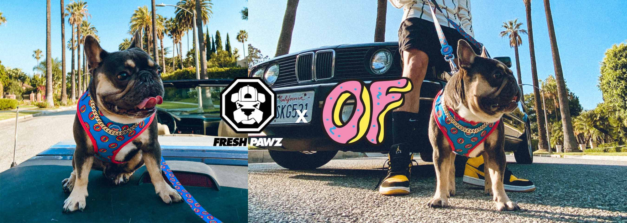 Odd Future Collab Launches Exclusively at Zumiez!