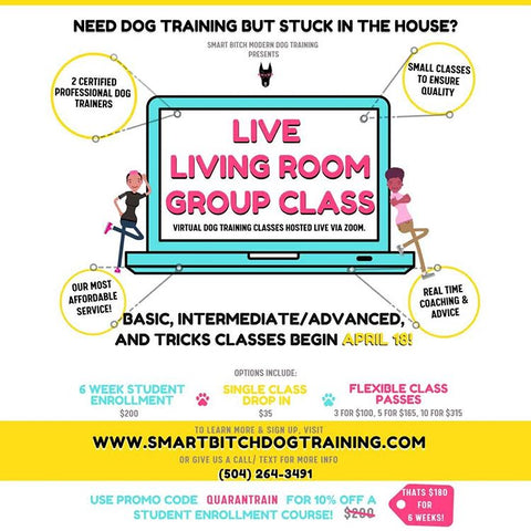 Smart Bitch online dog training