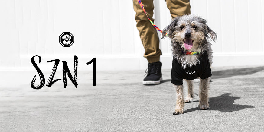 Fresh Pawz Season 1 Collection Lookbook