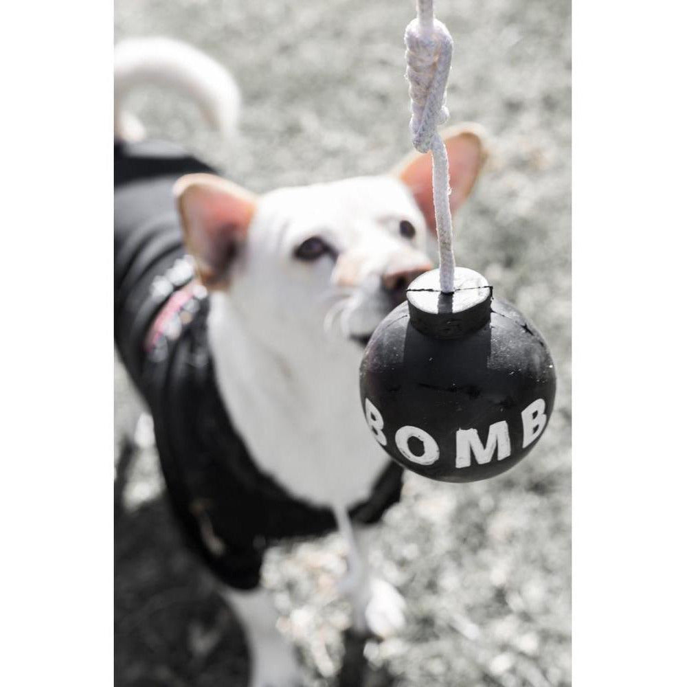 Tuff Bomb | Dog Toy