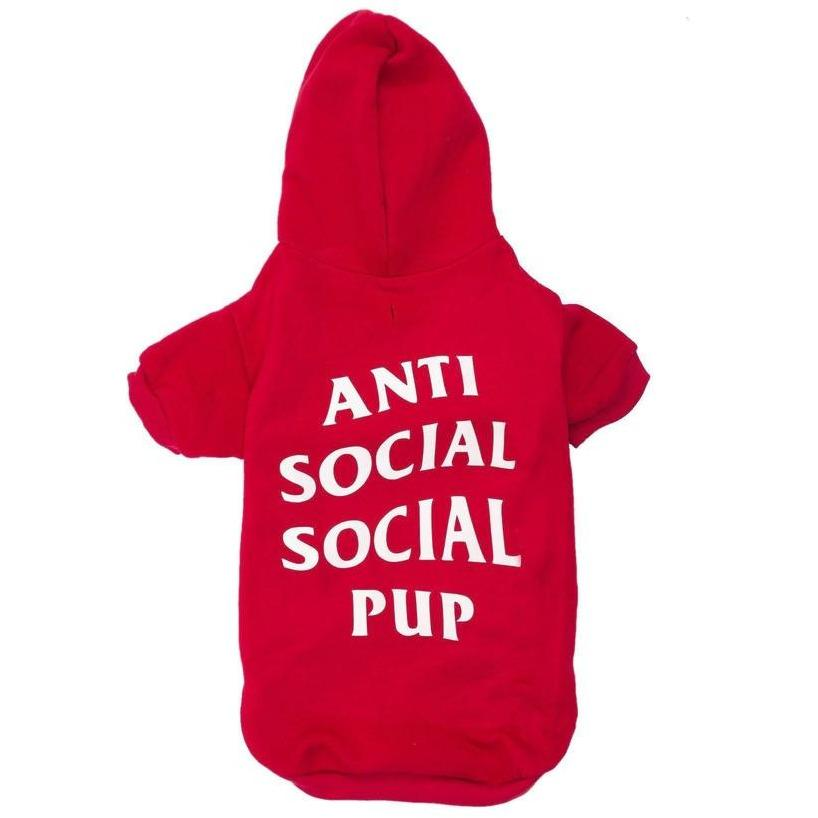 Anti Social Social Pup Hoodie | Dog Clothing