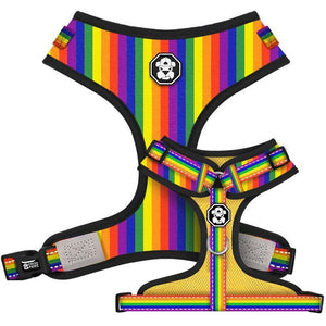 Pride Flag | Adjustable Mesh Harness