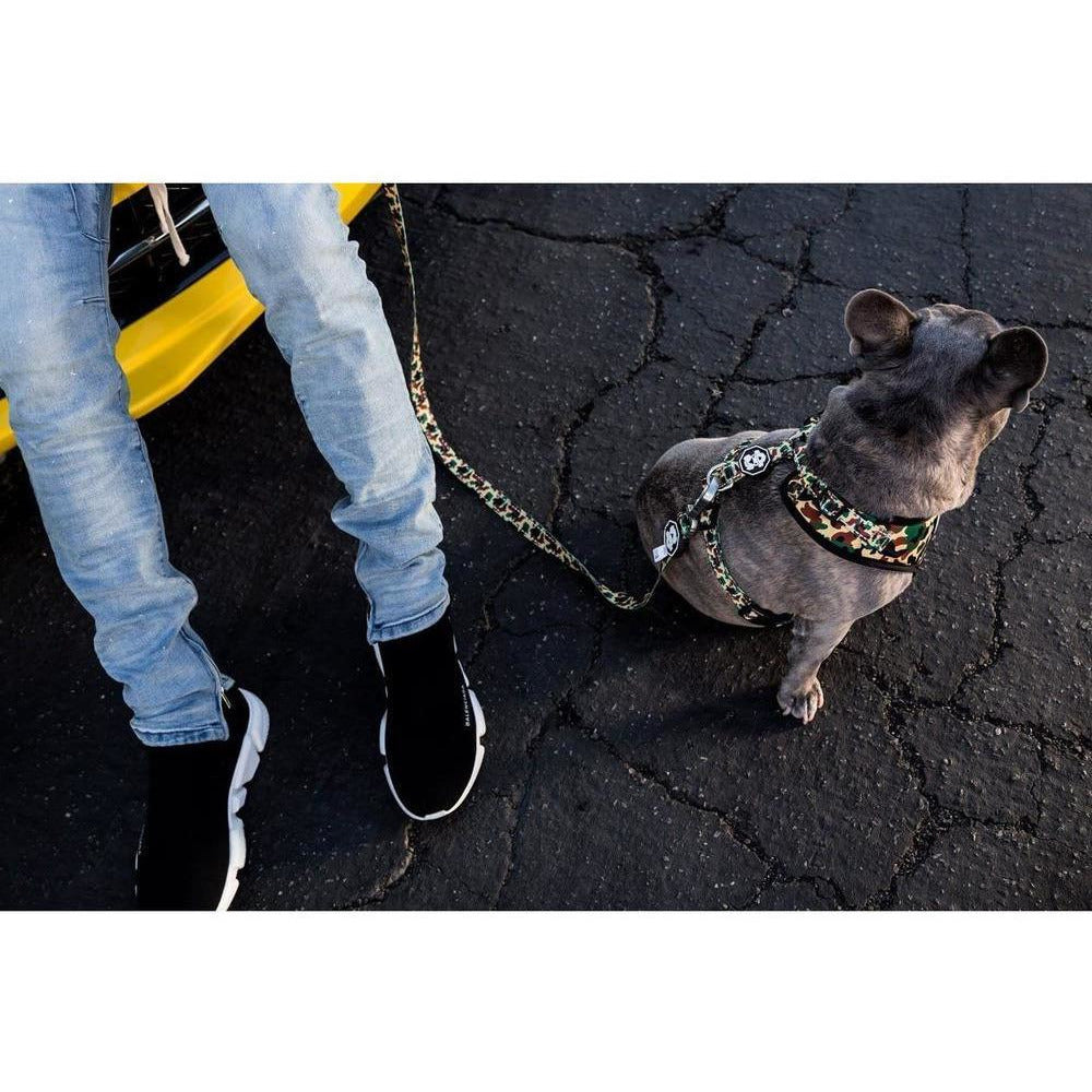 The Hype Camo | Leash
