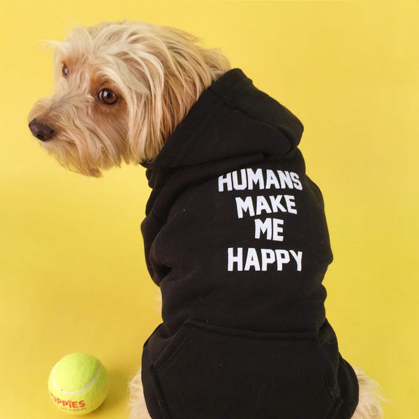 Dog Hoodies Are Back!