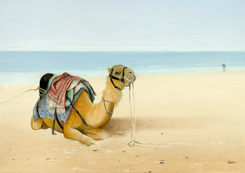 """Honey on Cable Beach"" - Windram Art"