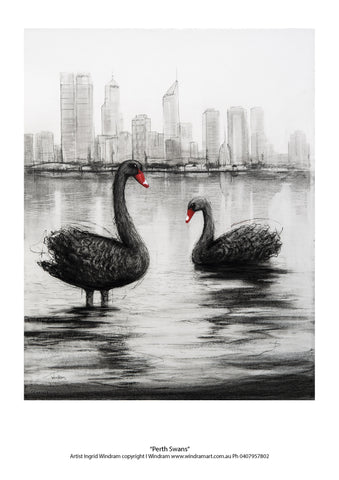 Perth Swans - Windram Art
