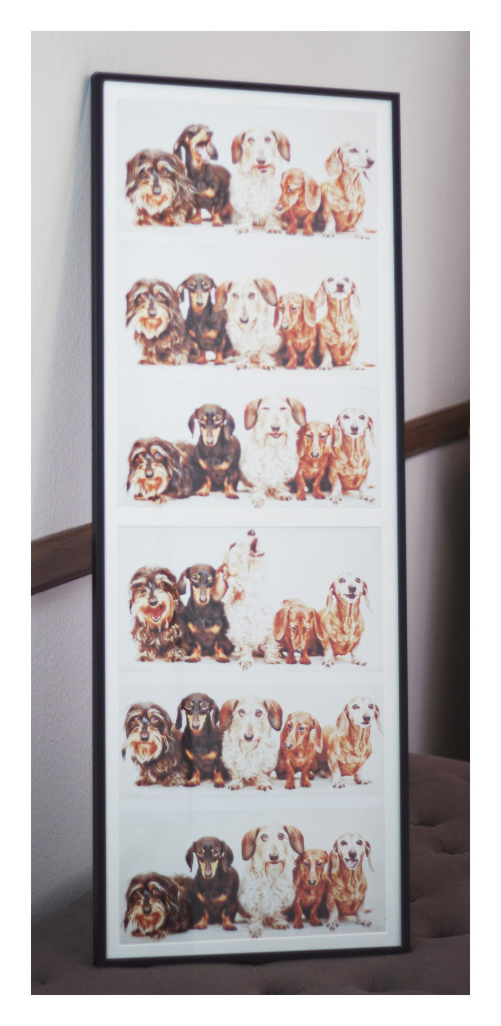 Original Artwork - Photo Booth Dachshunds