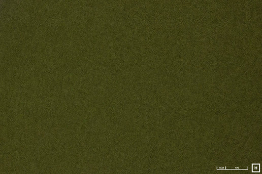 Boiled Viscose/Wool (Fern Green)
