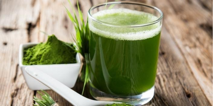Key Facts about Wheatgrass That You Didn't Know