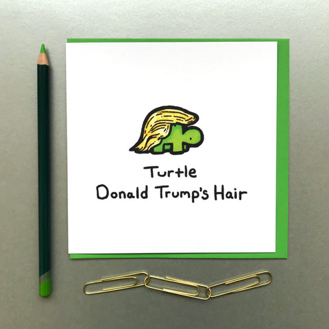 Turtle Donald Trump's Hair Card - Blue Phoenix City Products Uk