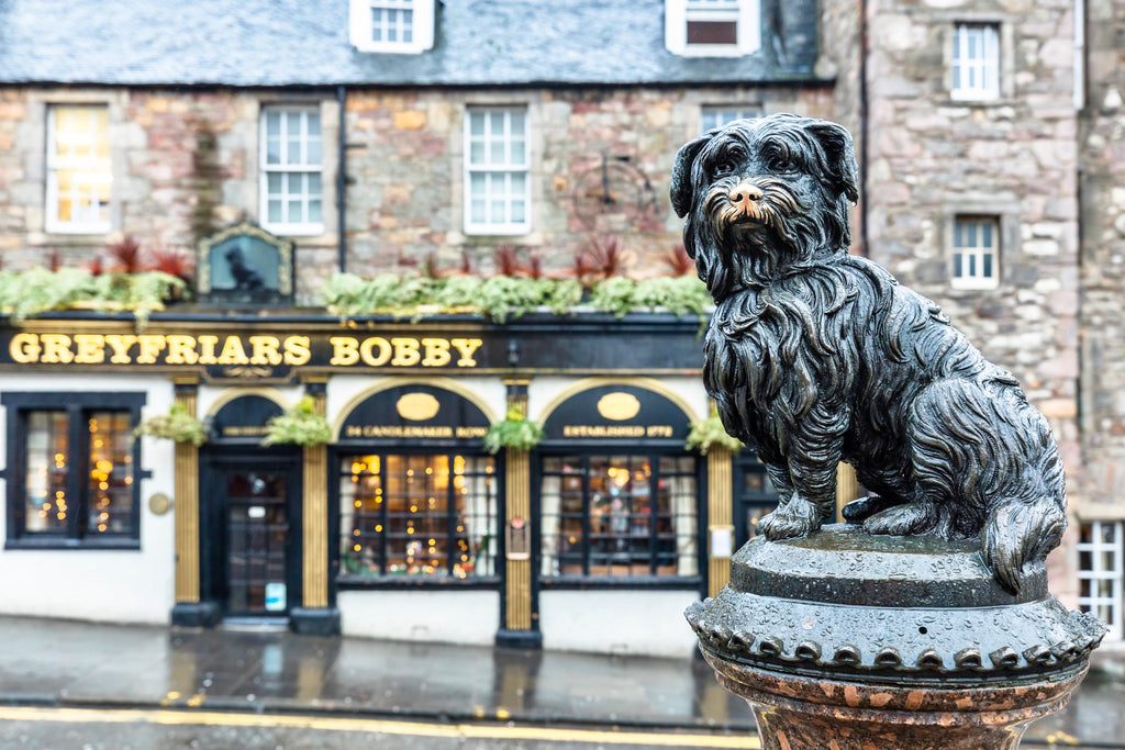 Greyfriars Bobby Postcard - Blue Phoenix City Products Uk