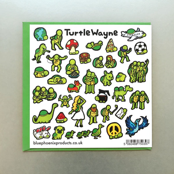Turtle The Struggle is Real Card - Blue Phoenix City Products Uk