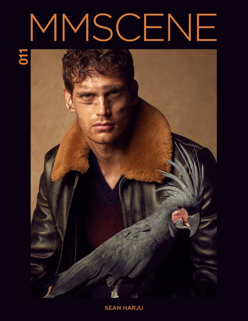MMSCENE #011 - OCTOBER 2016 - DIGITAL ISSUE