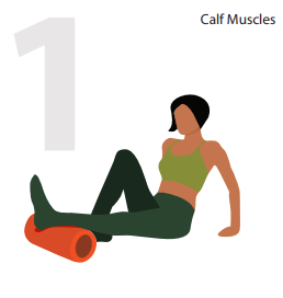 calf muscle form roller position