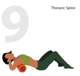theoratic spine position
