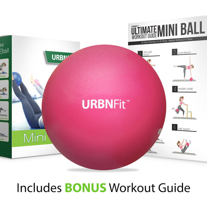 Barre Pilates /& Therapy Professional Mini Exercise Ball Ideal For Core Yoga