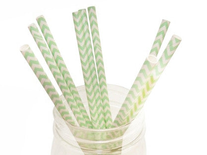 Mint Green Chevron Paper Straws