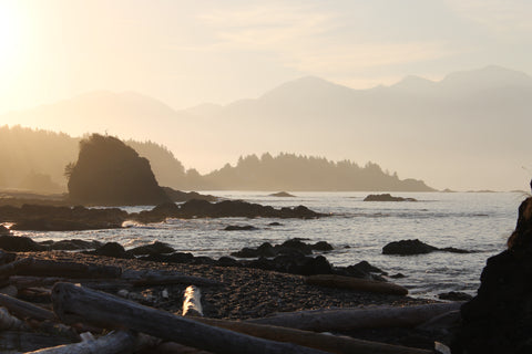 Near Yuquot, Nootka Trail.