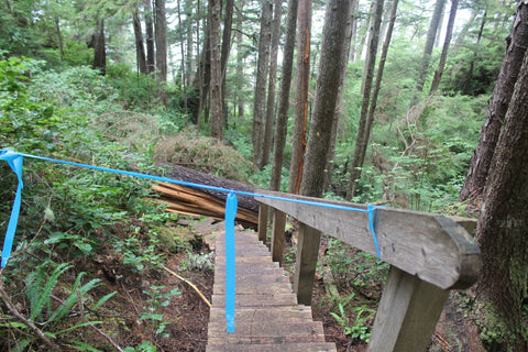North Coast Trail stairs out at Long Leg Hill