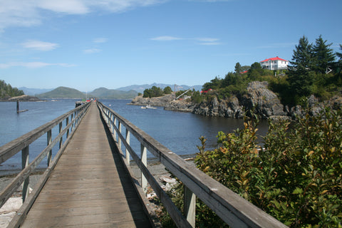 Nootka Trail Friendly Cove dock