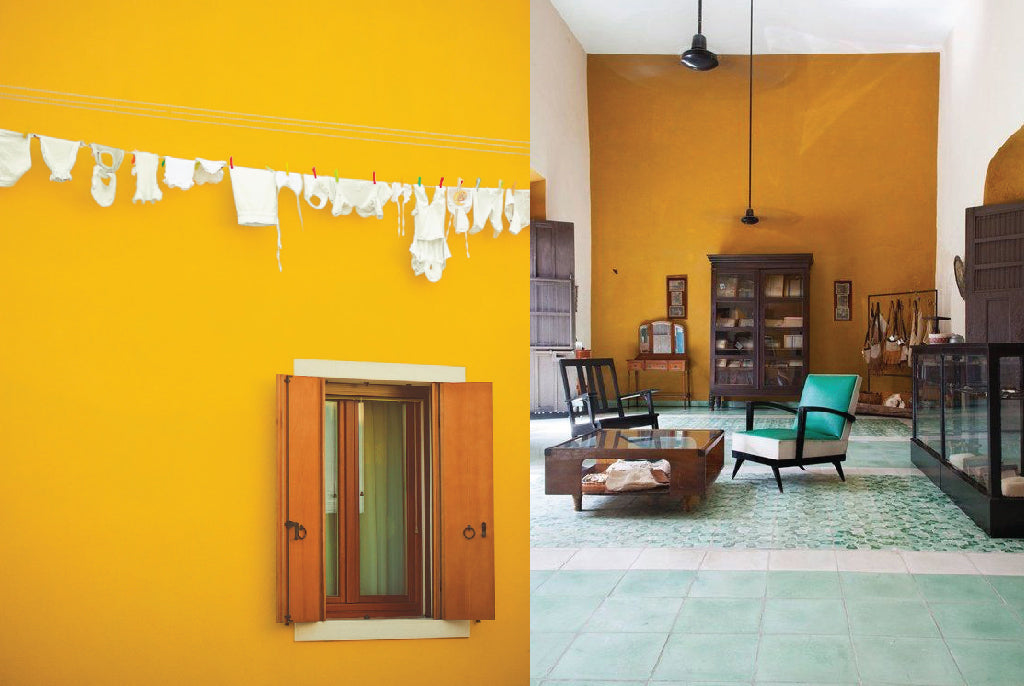 saffron yellow wall color