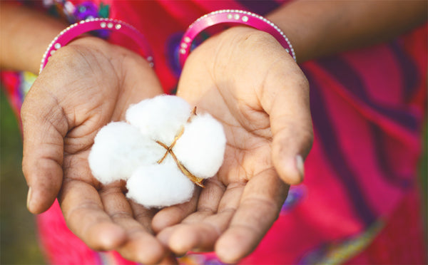 The Importance of Organic Cotton