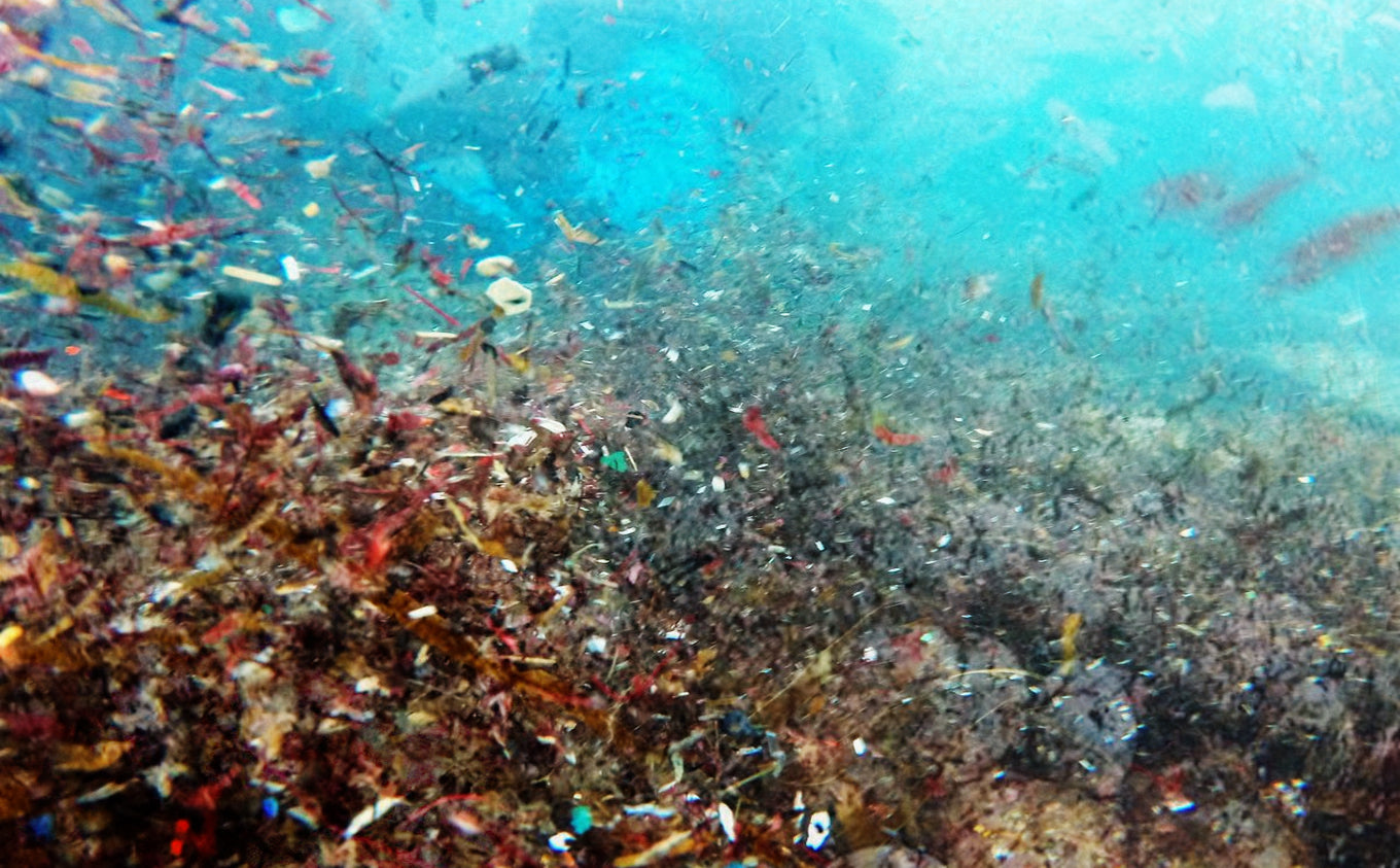 Microplastic Pollution How You Can Help Solve The Problem