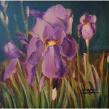 stravitzartgallery.com - Norma Wilson - Paintings - Iris & Delight