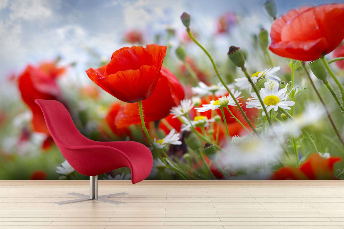 Zidne tapete Poppy red SW007
