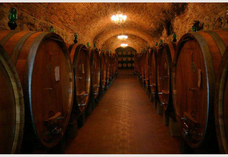 Zidne tapete Winery Cellar SW103