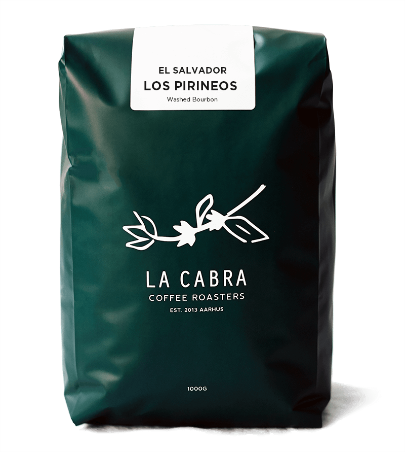 Los Pirineos Washed Bourbon
