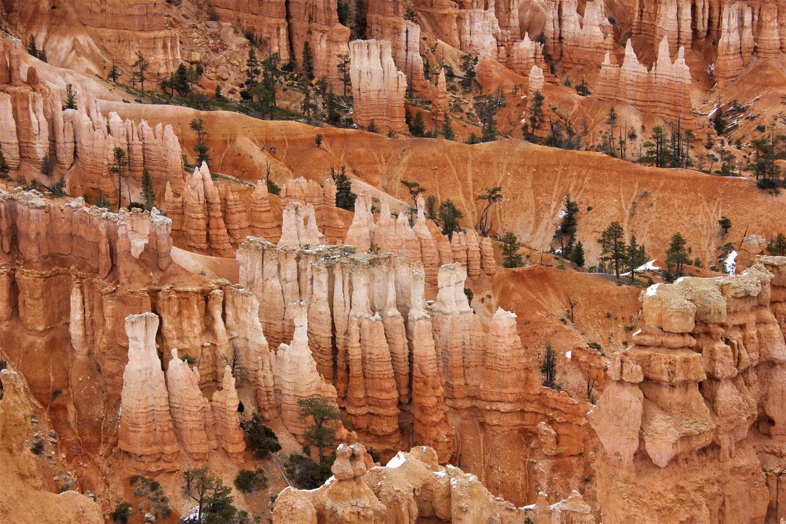 camera strap, camera wrist strap, sunglass straps, outdoor gear, camera equipment, hikes in bryce canyon, best hikes in bryce canyon, hiking bryce canyon, backpacking bryce canyon