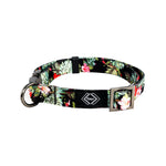 Hilo Dog Collar