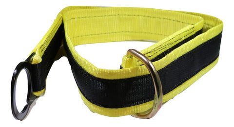 6 Ft. Anchorage/tie-Off D-Ring & Fall Protection