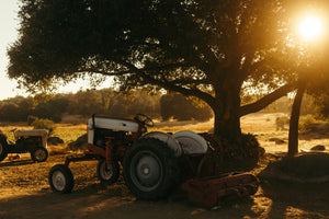 Questions to consider for Tractor Restoration