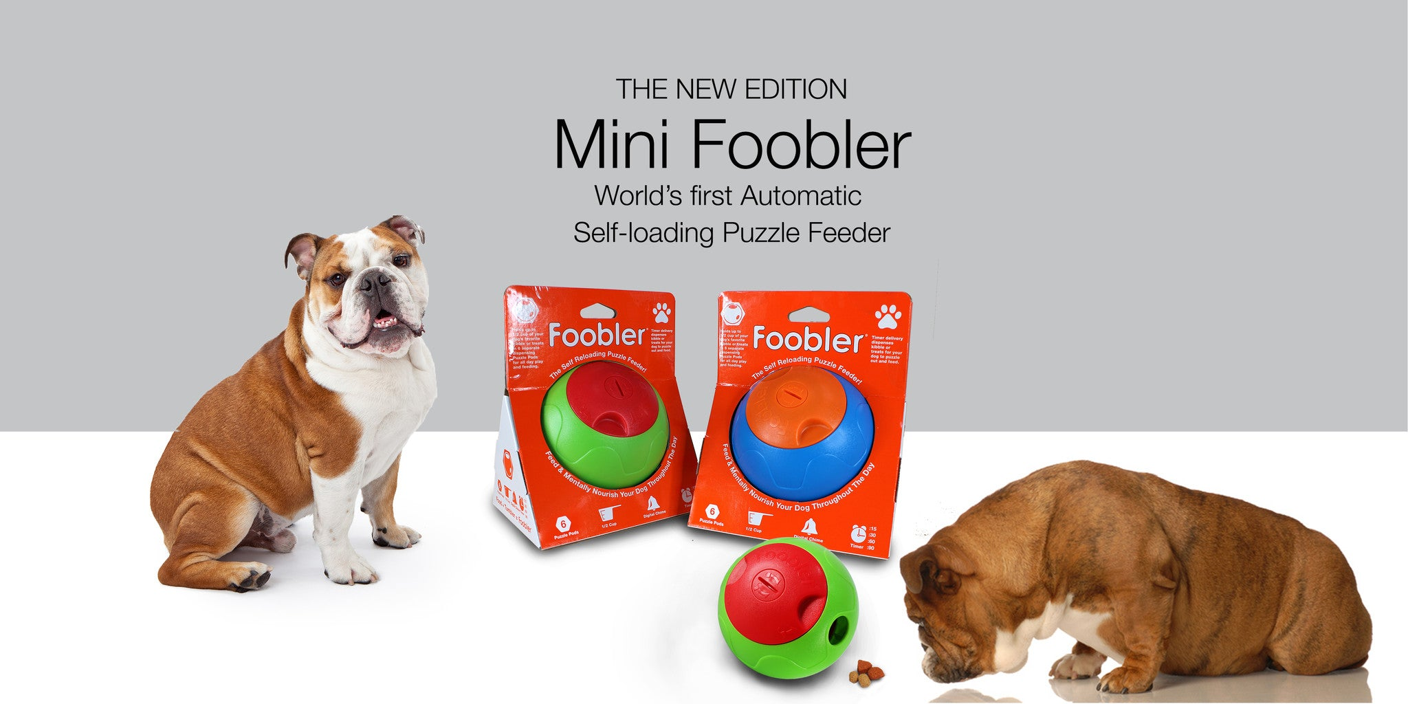 td food timer dp up amazon dog meals a cats for co dispenser to automatic pet feeder dogs day supplies design uk