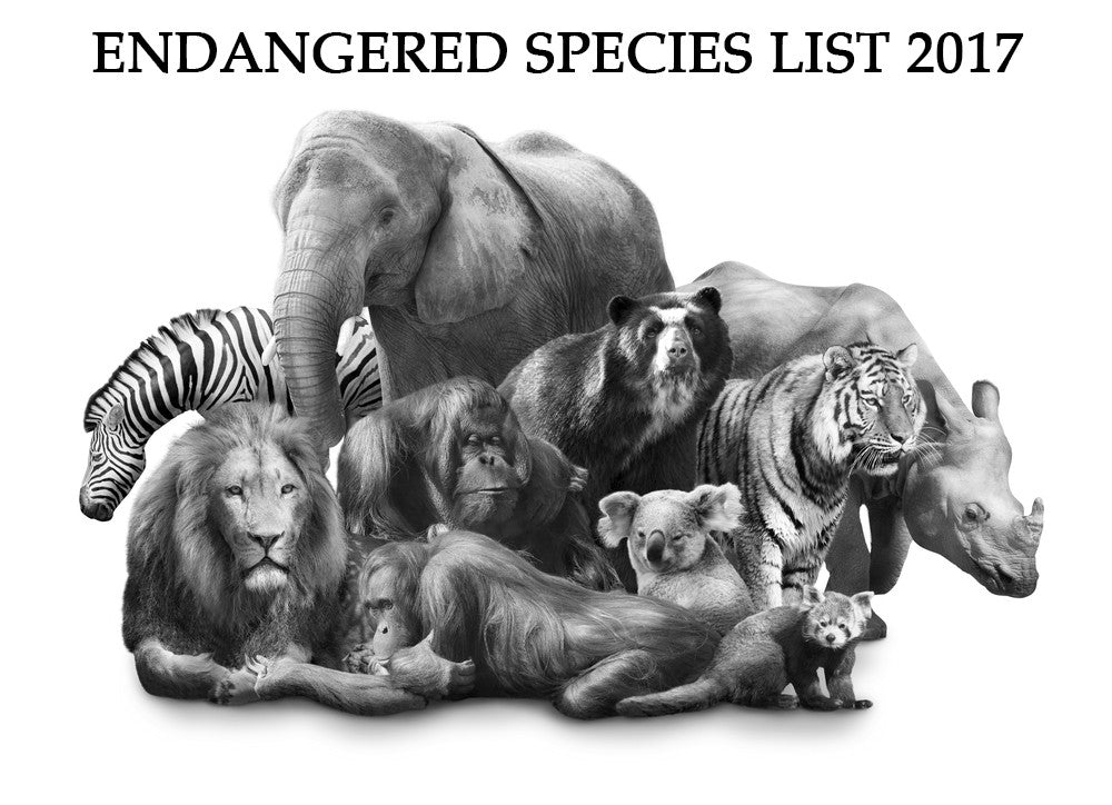 Endangered Species List 2017