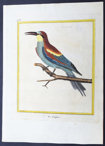 1775 Comte De Buffon Antique Imperial Ornithology Print of a European Bee Eater - Rare Imperial edition