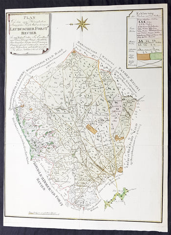 1782 G F Frentzel Large Rare Antique Map of Lubsza Forest Brzeg, Opole SW Poland