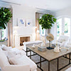 Crisp white living room brought to life with two vibrant green indoor pot plants.
