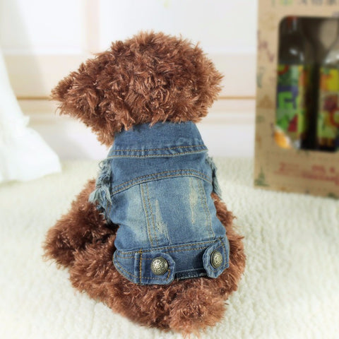 2015 Newest Denim Dog Jacket Clothing Personalized Pet Puppy Cat Jeans Vest Coat Dog Clothes for Teddy Poodle Chihuahua - Dottie D Shopping