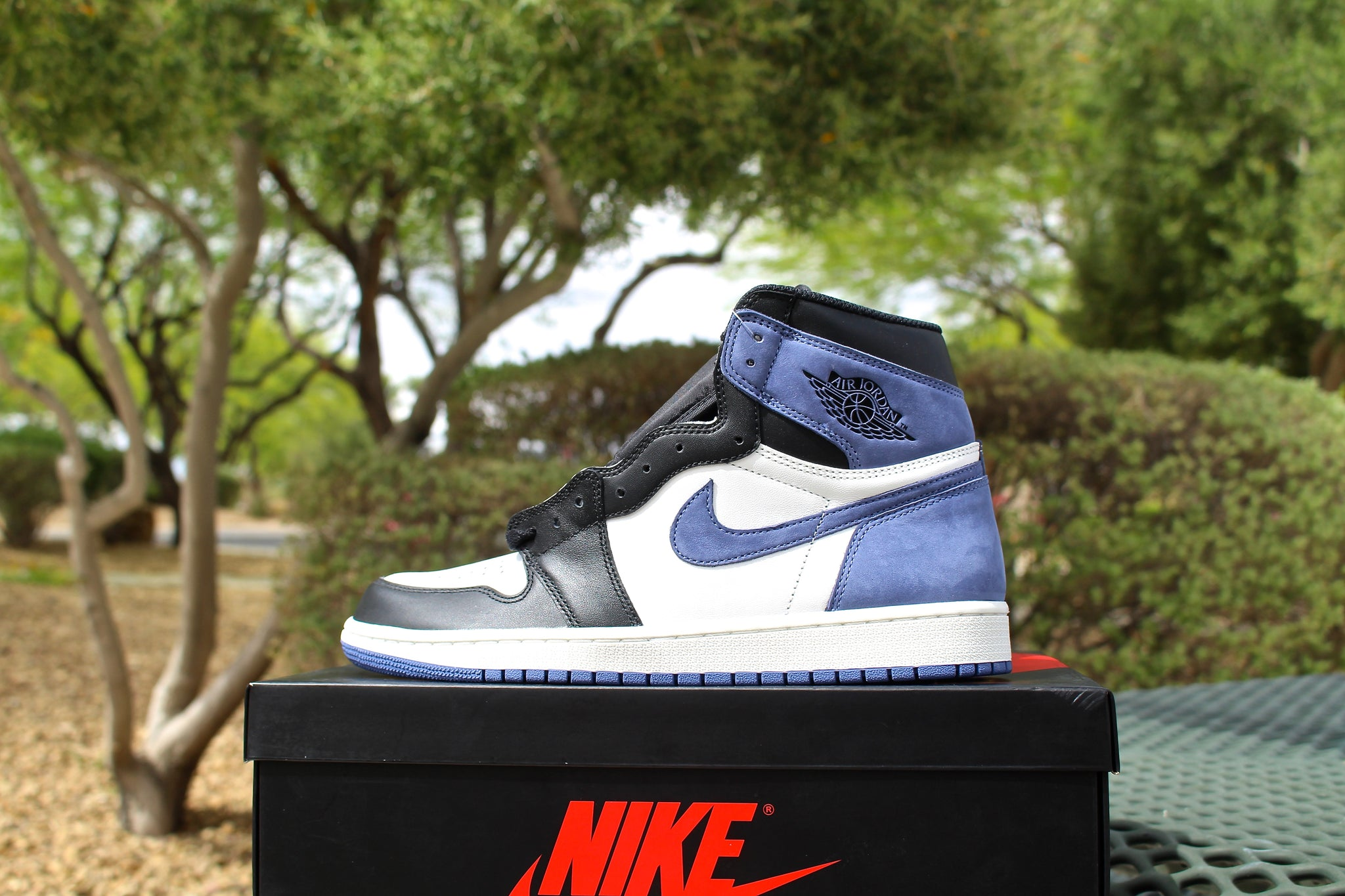 Air Jordan 1 Retro OG High (Blue Moon)