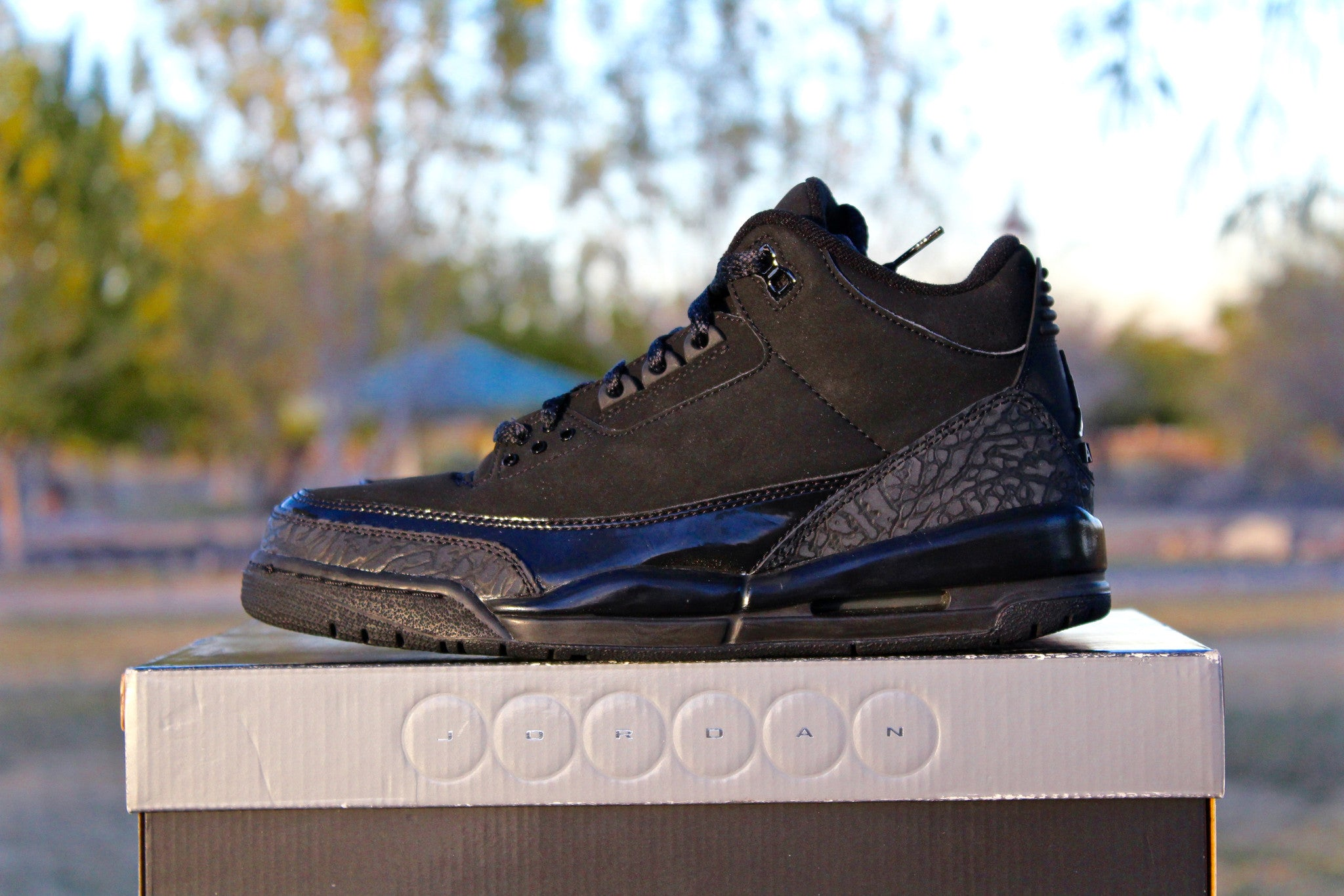 wholesale dealer 48d84 4780e air jordan 3 black cat