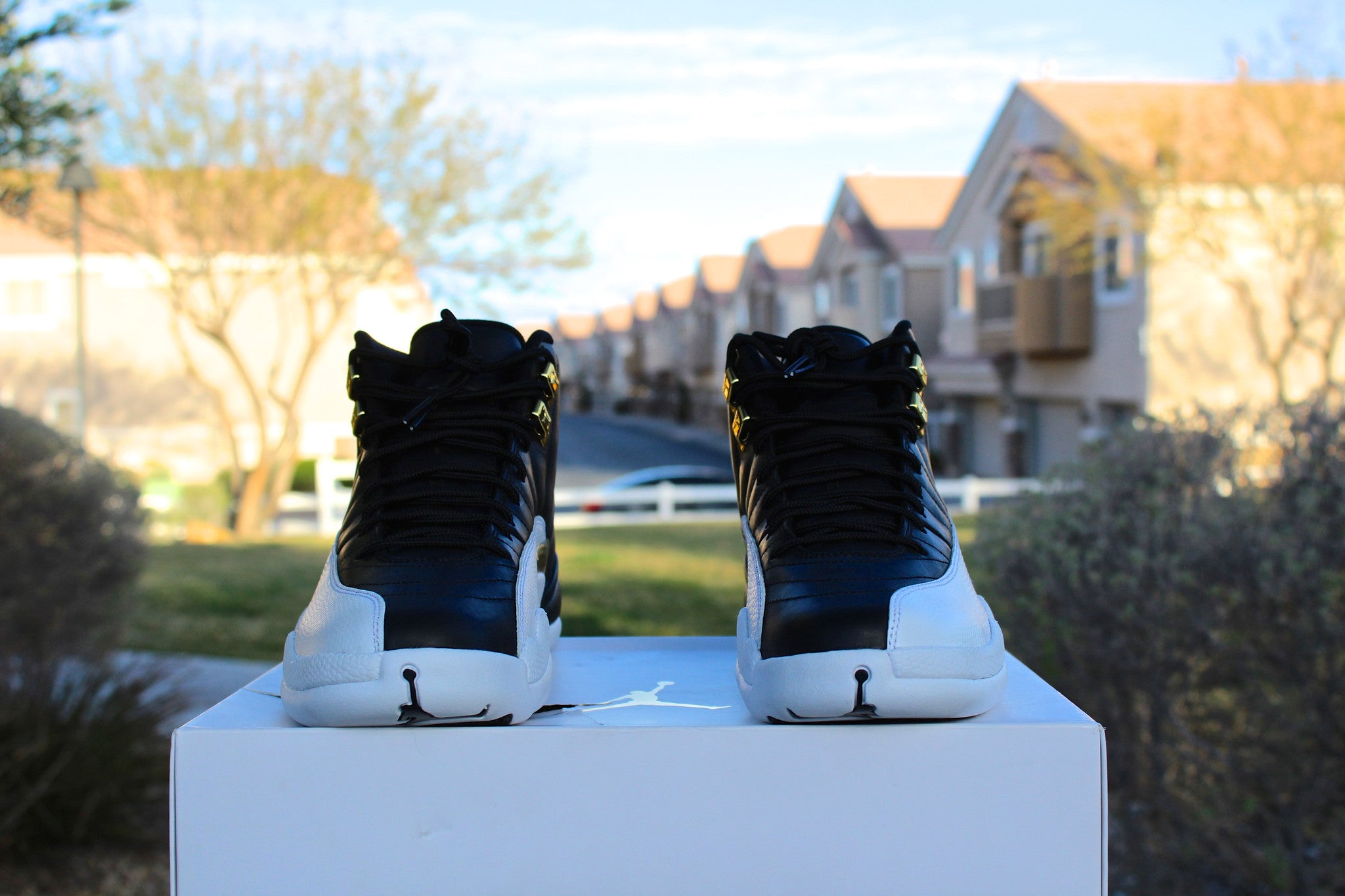 Air Jordan 12 Retro (Wings)
