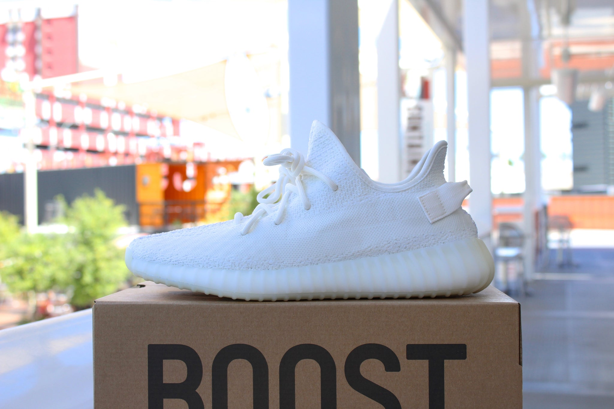 Adidas Yeezy Boost 350 V2 (Cream)