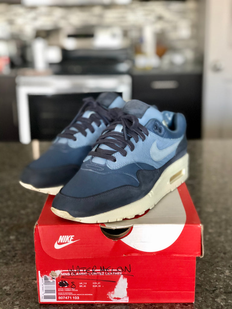 Nike Air Max 1 Pinnacle Ocean Fog
