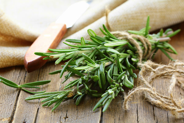 Rosemary – a symbol of love and fidelity