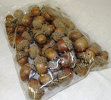 Dried Acorns Nuts - Oak Nut In Shell Natural x 150g - Paradise Crow -  Natural Design & Interiors