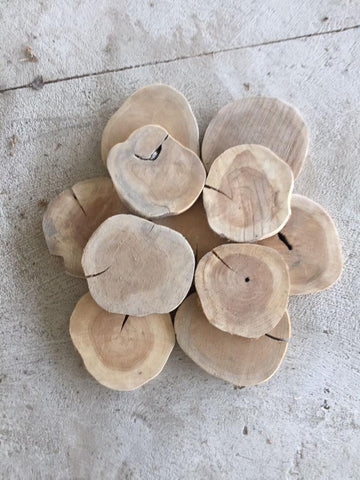 Wooden Teak Tree Slices 20cm - Large Wood Slices Natural Interiors - Paradise Crow -  Natural Design & Interiors
